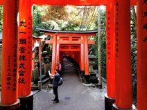 Torii und Backpacker